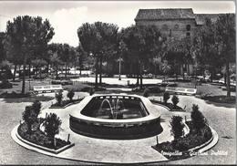 Senigallia - Giardini Pubblici - H4781 - Senigallia