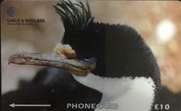Paco \ ISOLE FALKLAND \ 229CFKA \ King Cormorant \ Usata - Falkland Islands
