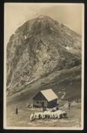 Kamnisca. *Kcca Na Kamniskem Sedlu* Circulada 1935. - Eslovenia