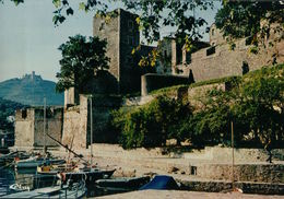 5080A   COLLIOURE    ECRITE - Collioure