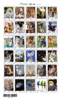 BRAZIL 2018 - (pre Sale): Upaep 2018 - Domestic Animals, Pets, Dogs, Cats, Fishes, Birds (MNH) - Issue: 11- 06 - Timbres