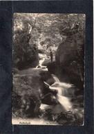 Creek Forest Landscape Hallerbach Petite Suisse Luxembourgeoise Pêcheur CPA 1907. Ch.Bernhoeft - Cartes Postales