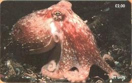 Isle Of Man - Man0154, Marine Life,Curled Octopus , 20,000ex, 2000, Used As Scan - Man (Ile De)