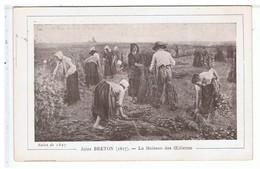 VIEUX PAPIERS-1914-39-ARBOIS-LOT DE 4 RECOMPENSES SCOLAIRE A LUCILE BESANCON-TAMPON ECOLE DE FILLE ARBOIS-VOIR PHOTOS- - Diploma & School Reports