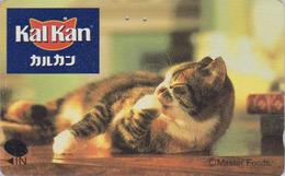 Télécarte Japon / 110-016 - ANIMAL - CHAT ** KALKAN ** - CAT Japan Phonecard - KATZE  GATTO  GATO - KAT 4777 - Chats
