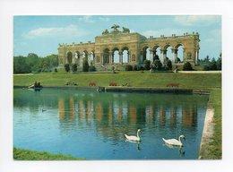 Autriche: Wien, Schloss Schonbrunn, Gloriette, Cygne (18-3102) - Château De Schönbrunn