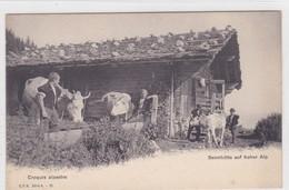 Croquis Alpestre . Sennhütte Auf Hoher Alp. C. P. N. Série A. - 10 - Elevage