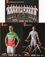Cyclisme, Serie Sangemini 2017, 13 Cartes - Cyclisme