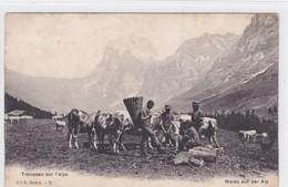 Troupeau Sur L'alpe. Weide Auf Der Alp. C. P. N. Série A. 7 - Elevage