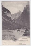 Paysage Dans Les Hautes Alpes. Berglandschaft. Vaches / Kühe / Caws C. P. N. Série G. 16 - Elevage