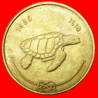 # SEA TURTLE: MALDIVES ★ 50 LAARI 1415 1995! LOW START ★ NO RESERVE! - Maldiven