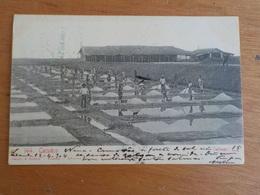 3393) Angola Africa Portuguesa Cacuáco Salinas Ed. Osorio E Seabra 1904 - Angola