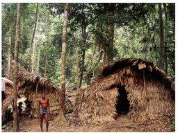 (47) Papua New Guinea Rainforest  (house) ? - Papua New Guinea