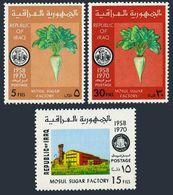 Iraq 574-576,MNH.Mi 643-645. Publicity For Mosul Sugar Factory.Sugar Beet.1970. - Iraq