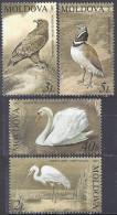 MOLDAVIE - Oiseaux 2003 - Birds