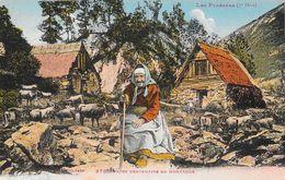 Les Pyrénées - Pâtre Centenaire En Montagne Avec Son Troupeau De Vaches - Carte Colorisée Non Circulée - Allevamenti
