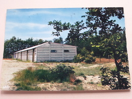 OPOETEREN Zavelheem ( Huis Baeten-Tijskens ) Anno 1972 ( Zie Foto Voor Details ) ! - Maaseik