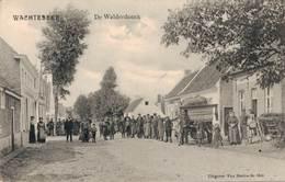 Wachtebeke  De Walderdonck - Wachtebeke