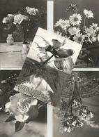 5 CART. FIORI  (196) - Cartoline
