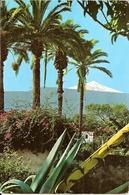 24  ---  31  REVEL   Griffe Annulation Timbre D'Espagne - Marcofilia (sobres)