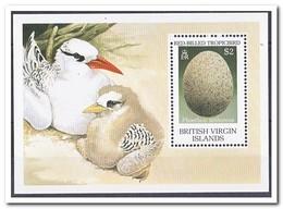 Britse Maagdeneilanden 1990, Postfris MNH, Birds, Egg - Britse Maagdeneilanden