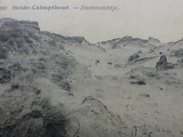 Kalmthout Heide, Duinenzichtje 1921 - Kalmthout