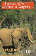 Telecarte SUISSE TELELINE - ELEPHANT - Jungle