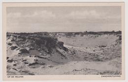 Veluwe - Zandverstuiving - Nederland