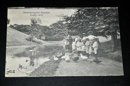 944- Scheveningsche Boschjes, Eendjes Voeren - 1925 / Geanimeerd - Scheveningen