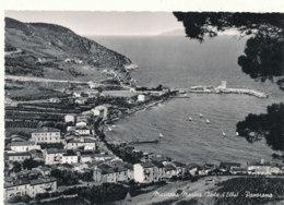 ITALIE )) MARCIANA MARINA  / ISOLA  D ELBA   Cpsm Grand Format / PANORAMA - Livorno