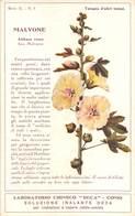 "08771 ""COMO - LABORATORIO CHIMICO DECA - MALVONE - ALTHEA ROSEA - PIANTA MEDICINALE""  CART NON SPED - Plantes Médicinales"
