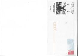 PAP CORSE THEME CERF 1986 Rare - Marcophilie (Lettres)