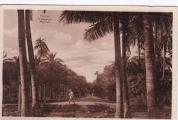 MADRAS (now Chennai) , India , 00-10s , Palms Chepauk - India