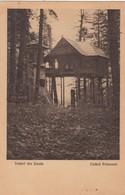 Vederi Din Sinaia , Cuibul Princesel , ROMANIA , 1924 - Roemenië