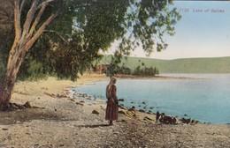 Lake Of Galilee , 00-10s - Palestine