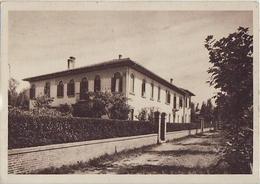 7858 ALBERONI LIDO DI VENEZIA - Venezia