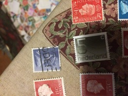 OLANDA ORDINARIO GRIGIO - Stamps