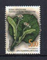 BOSNIE-HERZEGOVINE - BOSNIA-HERZEGOVINA - MOSTAR - 2010 - FLOWERS - FLEURS - - Bosnie-Herzegovine