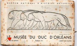 35469-ZE-75-MUSEUM NATIONAL D'HISTOIRE NATURELLE-LE MUSEE DU DUC D'ORLEANS----carnet Album De 9 Vues - Museums