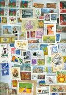 18 KILO TEMBRES Du MONDE MIXTURE Sur Papier Du CHARITE - Stamps