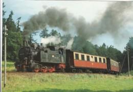 1954560Dampf-Schmalspurlokomotive 99 6102-0 (Karte 21-15) - Trains