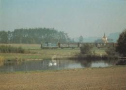 1954567Diesel-Streckenlokomotive 211 209-2 (Karte 21-15) - Trains