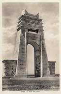 12206-BENGASI(LIBIA)-L'ARCO DEI FILENI-EX COLONIE ITALIANE-FP - Guerra 1939-45