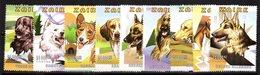 Serie  De Dogs De Zaire - Cani