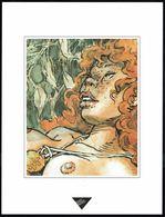 """Visage Extrait De """"TROIS CHEVEUX BLANCS"""" De HAUSMAN Et YANN, Issu Du Porte-folio Collection """"Aire Libre"""" 1993 (scan 2) - Affiches & Offsets"""
