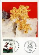 ORO NATIVO  Gold  Or  Postcard  Brousson Aosta  Mineralexpo Torino - Minerals