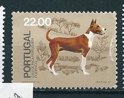 N°  1503 Chien : Podengo  Timbre Portugal (1981) Oblitéré Pli - Oblitérés