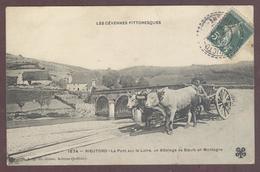 Rieutord Attelage De Boeufs Pont Sur La Loire  * ARDECHE Usclades-et-Rieutord **  Usclades Et Rieutord Canton De Thueyts - Frankreich