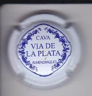 PLACA DE CAVA VIA DE LA PLATA (CAPSULE) - Placas De Cava