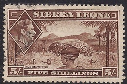 Sierra Leone 1938 KGV1 5/-d Red Brown SG 198 ( L1028 ) - Sierra Leone (...-1960)